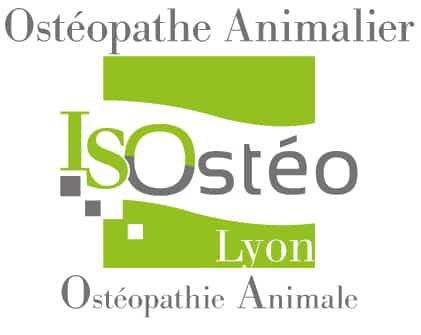 logo ostéopathe animalier vert et gris pour l'école ISOstéo d'ostéopathes animaliers